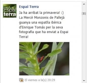 EspaiTerra2